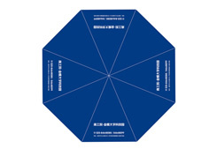 促销礼品广告伞-南工院金蝶大学科技园礼品