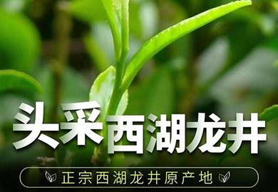 商务礼品,茶礼,明前茶,西湖龙井